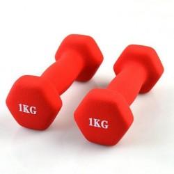 HGSS1-Exercise Dumbell 1kgx2