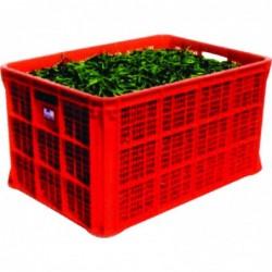 NA85425JR - Crate JR85425...